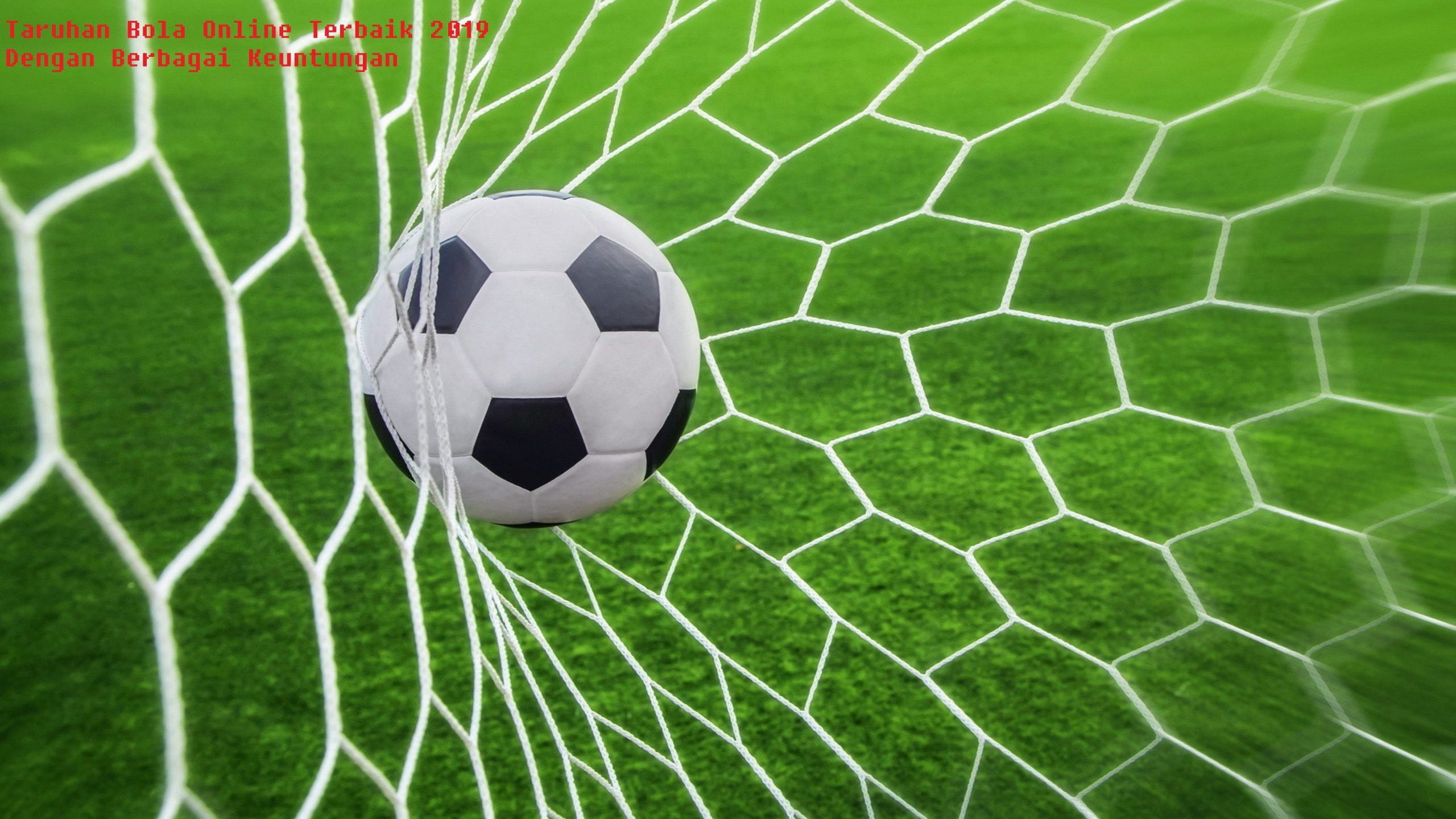 Taruhan Bola Online Terbaik 2019 Dengan Berbagai Keuntungan